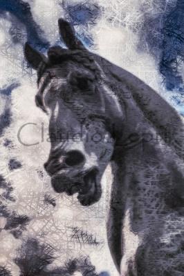 Leonardo's Horse - il Cavallo di Leonardo