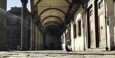 Firenze - dicembre 2016
