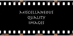 Miscellaneous Quality Images