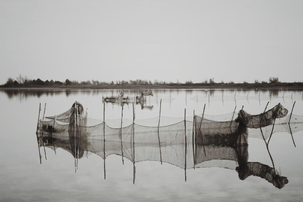 Laguna del Mort (VE) - Vorrei raccontare le storie dei luoghi tra terra e mare da Trieste e Venezia. Sarà un lungo viaggio.