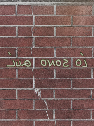 """""""IUQ ONOS OI"""" (2017) _ Selezionato per Collettiva Circuiti Dinamici"""