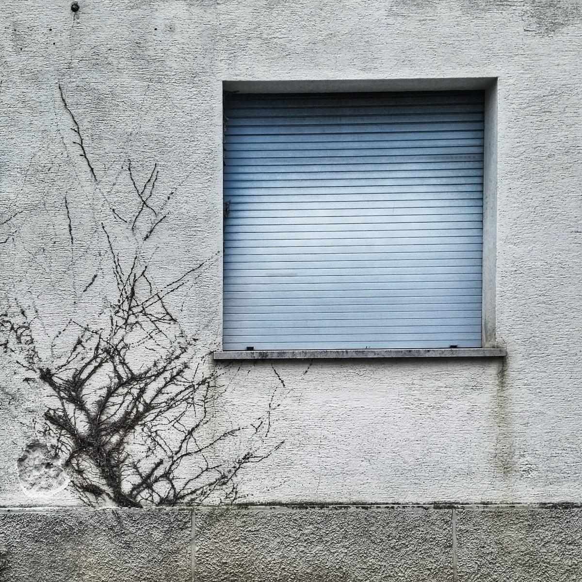 Residui d'inverno – Cividale del Friuli (UD)